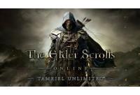 Герой с тысячью лицами. Обзор The Elder Scrolls Online: Tamriel Unlimited для PlayStation 4